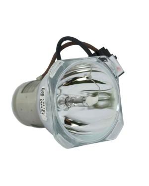 IIyama 7011044-000 Original Projector Bare Lamp