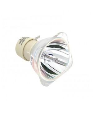 IIyama 972Z001A02 Original Projector Bare Lamp