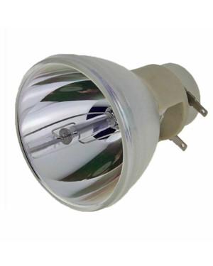 Optoma SP.8BH01GC01 Original Projector Bare Lamp