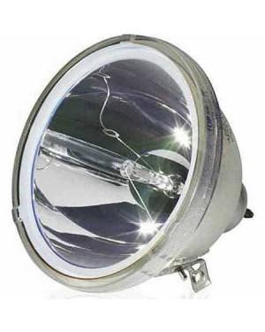 Optoma SP.83401.001 Original Projector Bare Lamp