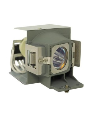 ViewSonic RLC-077 Projector Lamp with Housing