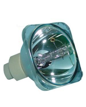 Acer EC.J4800.001 Original Projector Bare Lamp