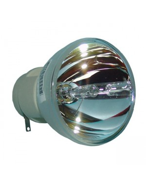 Acer EC.J8000.001 Original Projector Bare Lamp