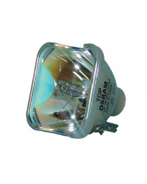 JVC BHL-5005-SG Original Projector Bare Lamp