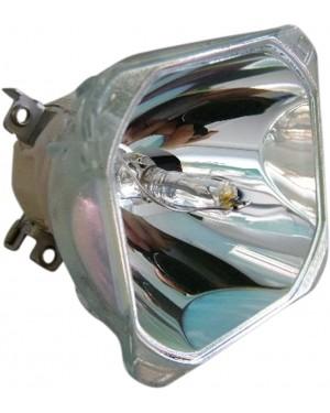 Liesegang ZU1200044010 Original Projector Bare Lamp