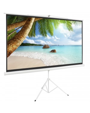 "Iview / 7Star 150cmx150cm 80"" Diagonal Tripod Projector Screen"